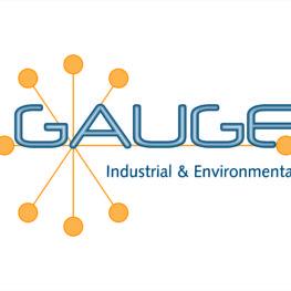 Gauge uindustrial and environmental